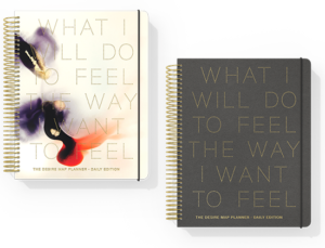 Gift ideas: Desire Map Planner Collection